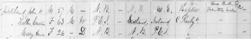 1891 census Kirkland