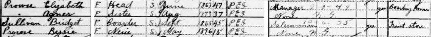1911 Census.png